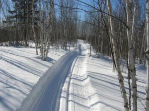 Briskey Trails Fredenberg Township Duluth MN